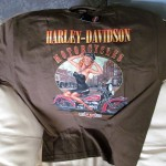 HD-26 Deadwood SD Pinup Girl Brown 2XL F50